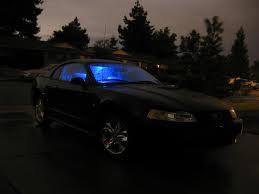 Mustang Night Prowl