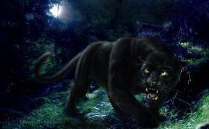Tezcatlipoca Jaguar