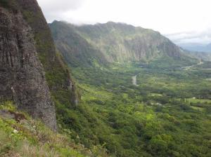 Valley-rain-forest
